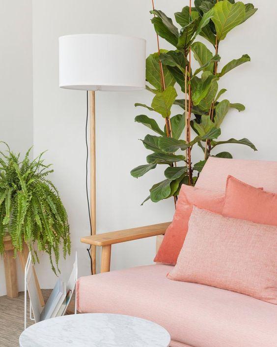 Sofá cor pessego para sala de estar com vasos de plantas