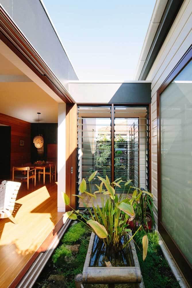 Jardim de inverno com plantas para o sol