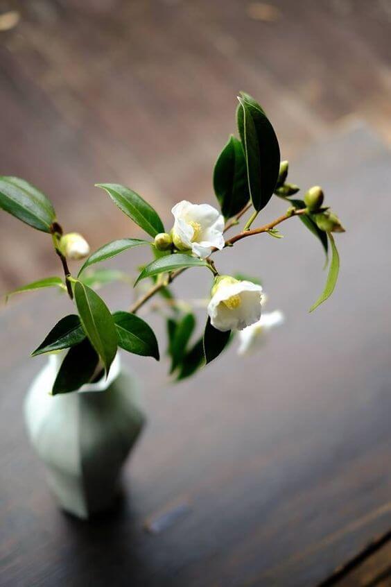 Decoração com vaso ikebana branca