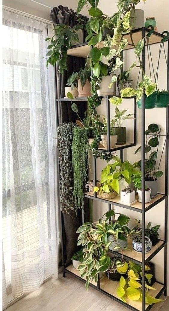 Enfeites para estante com vasos de plantas