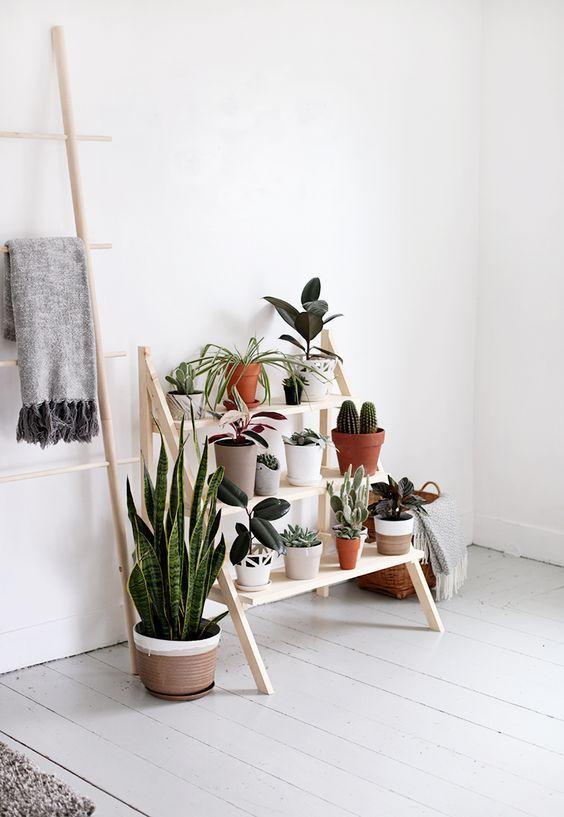 Estante cavalete de madeira com plantas para sala de estar