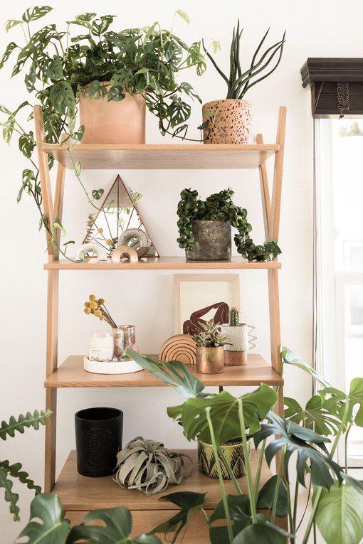 Estante cavalete para plantas de madeira