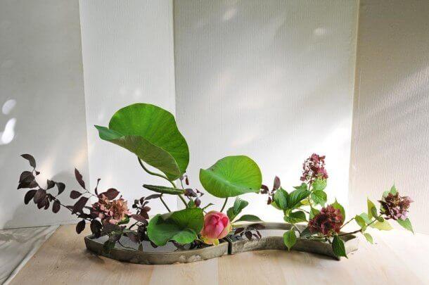 Ikebana no estilo Rimpa