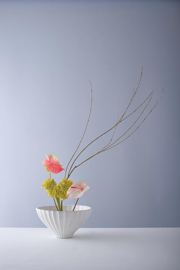 Ikebana para decoração minimalista e chique