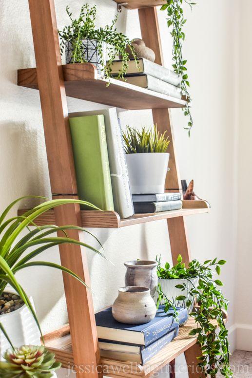 Plantas e livros na estante escada