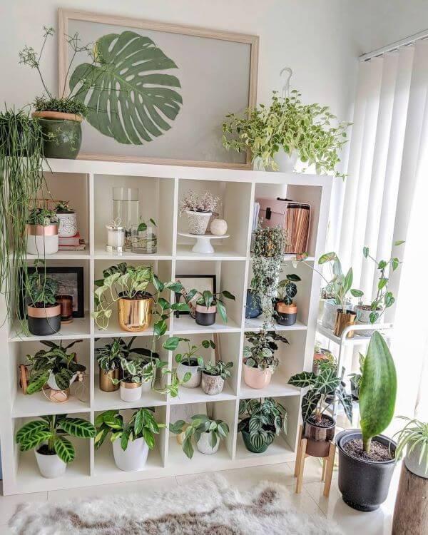 Sala de estar boho com estante cheia de plantas