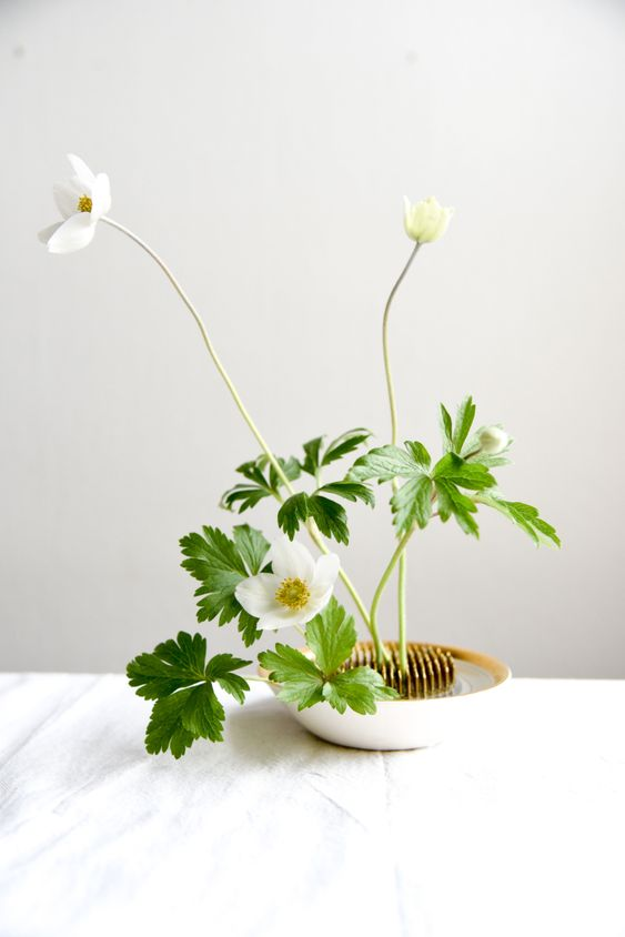 Vaso branco com ikebana na decoração minimalista