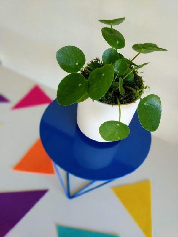 A Pilea peperomioides também é conhecida como planta chinesa do dinheiro. Fonte: Pinterest
