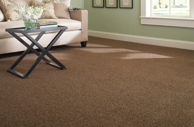 Carpete marrom para sala de estar clássica