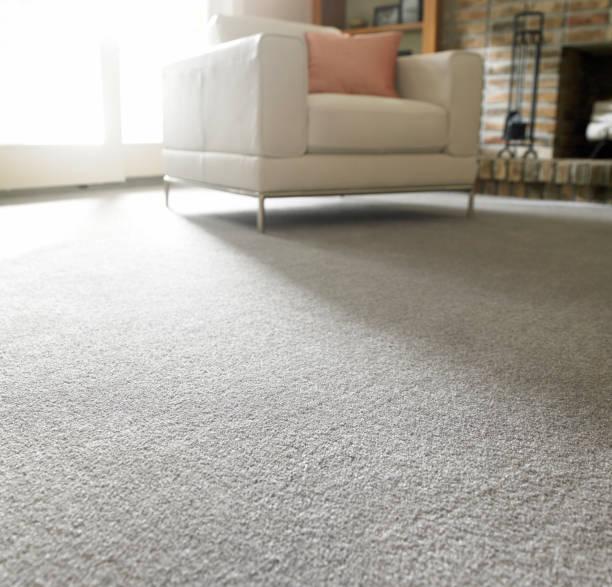 Sala de estar com carpete cinza e móveis confortáveis
