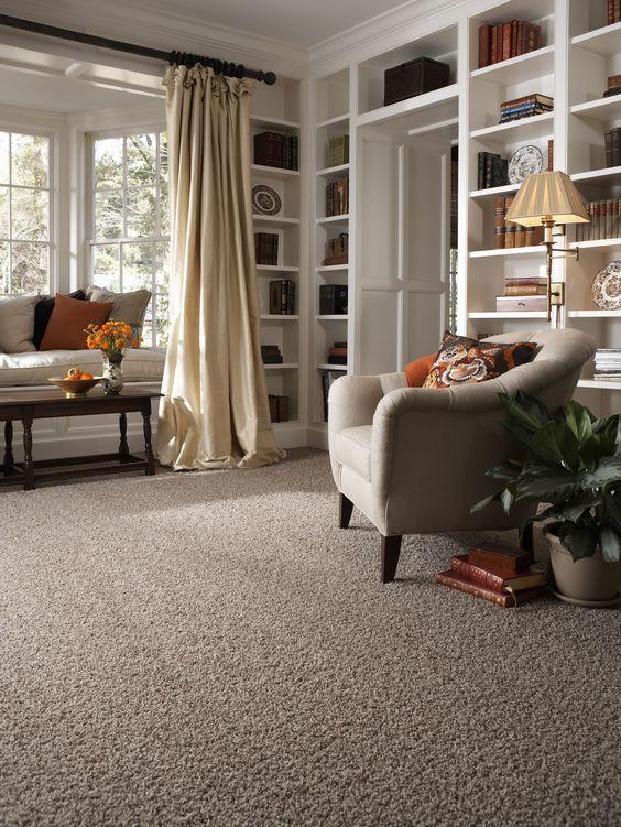 Carpete para sala com estante e móveis confortáveis