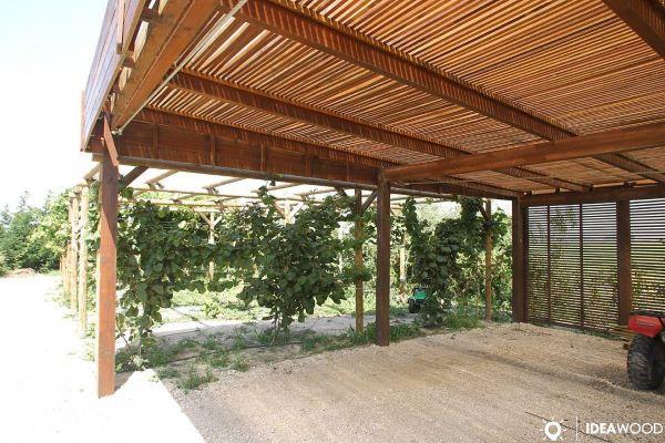 Casa com modelos de garagem de madeira coberta