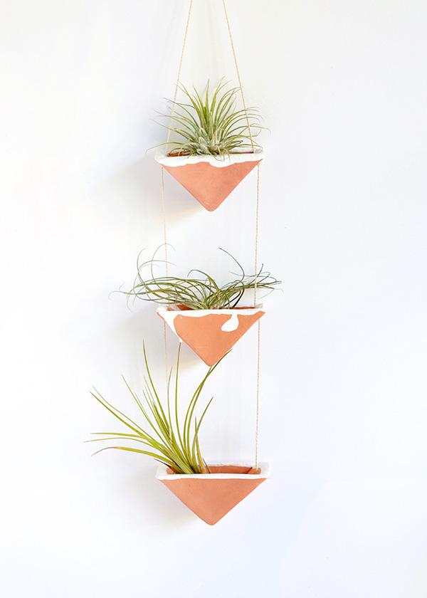 Decoração criativa com air plantas no vaso de cerâmica