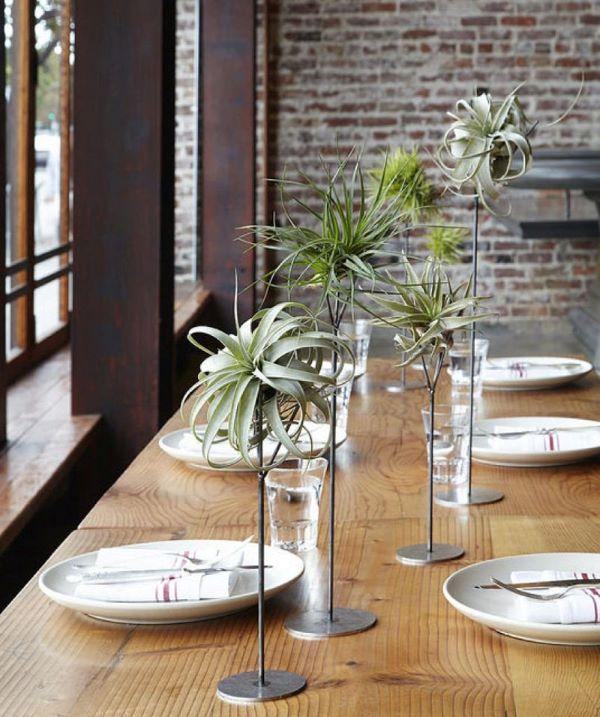 Decoração de mesa de jantar com plantas aéreas no centro