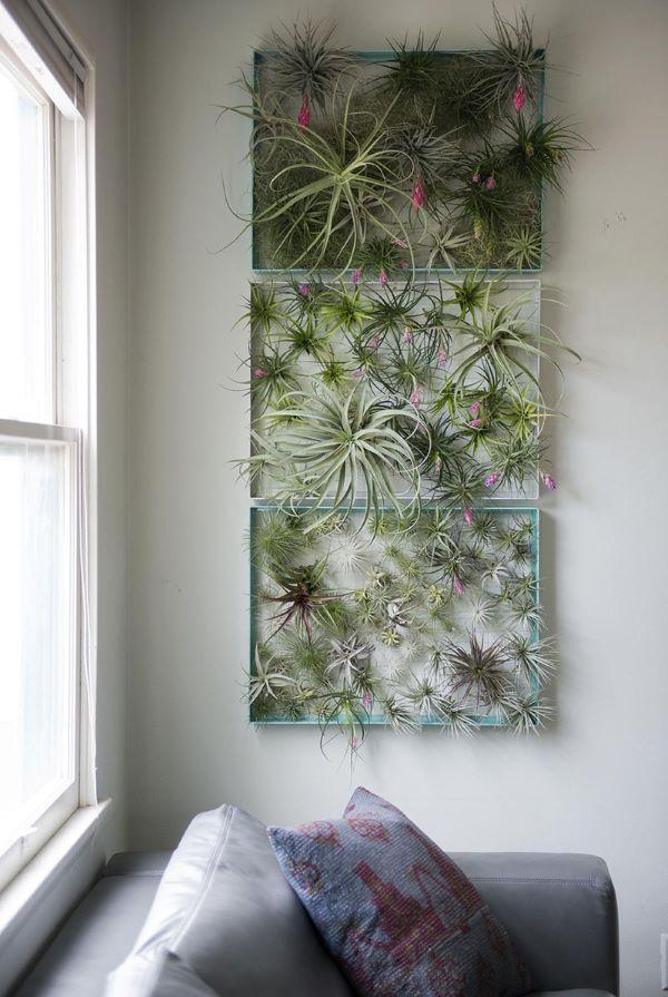 Jardim vertical com plantas aéreas na sala de estar