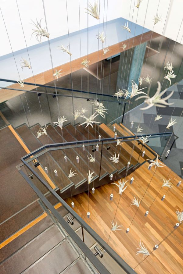 Lustre decorado com plantas aéreas