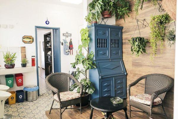 Móveis vintage para sala de estar com plantas suspensas