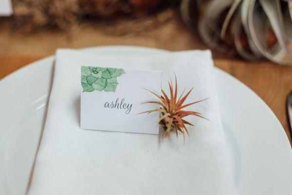 Plantas aéreas na decoração da mesa de jantar