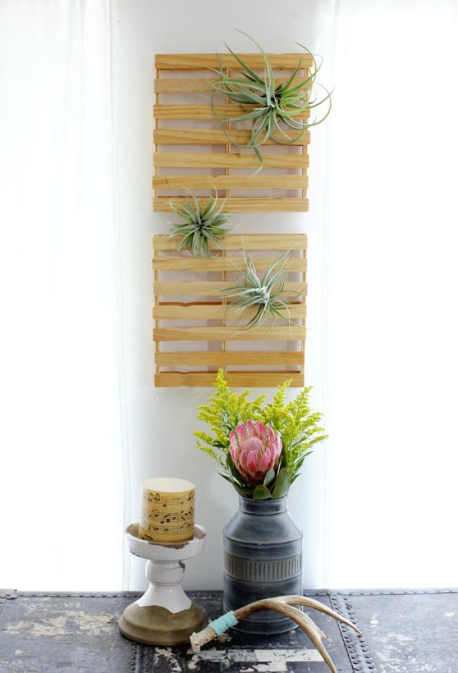 Plantas aéreas na decoração de casa rústica