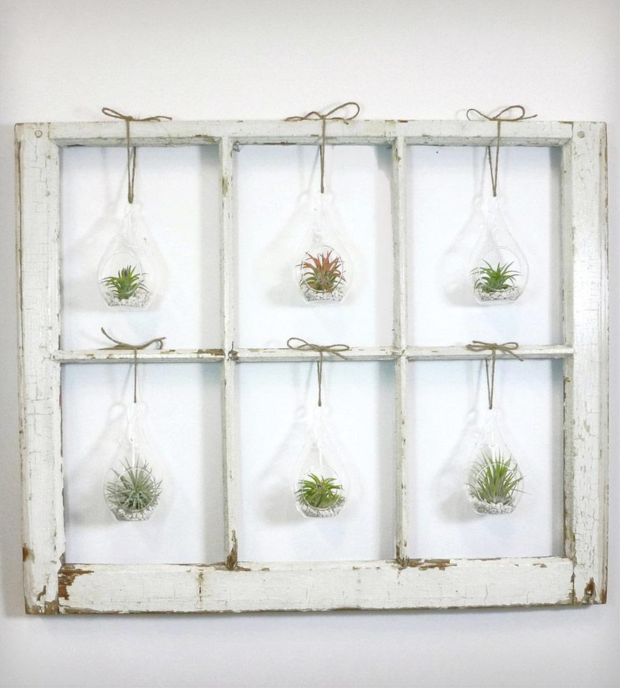Quadro criativo com plantas aéreas na decoração