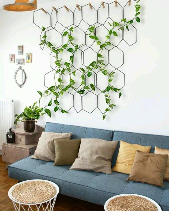 Sala de estar decorada com plantas aéreas do tipo trepadeira