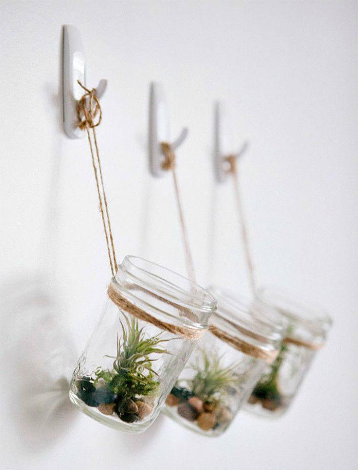 Vaso de parede com plantas aéreas