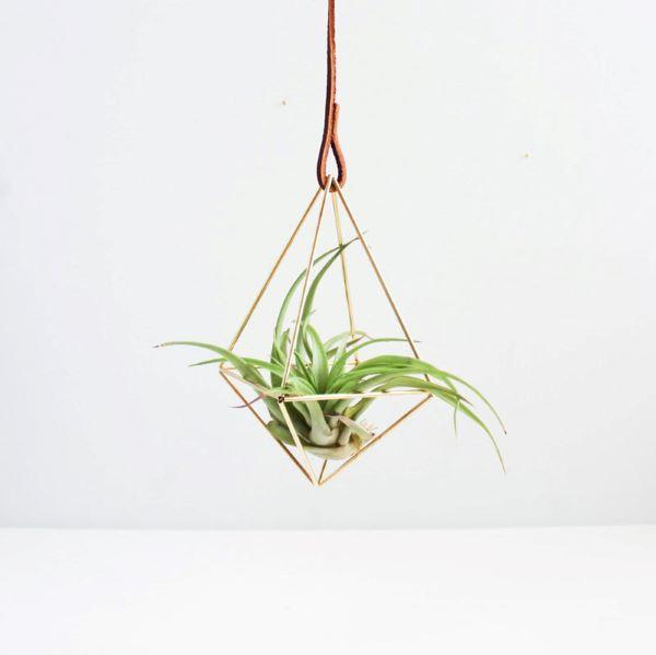 Vaso dourado para plantas aéreas delicadas