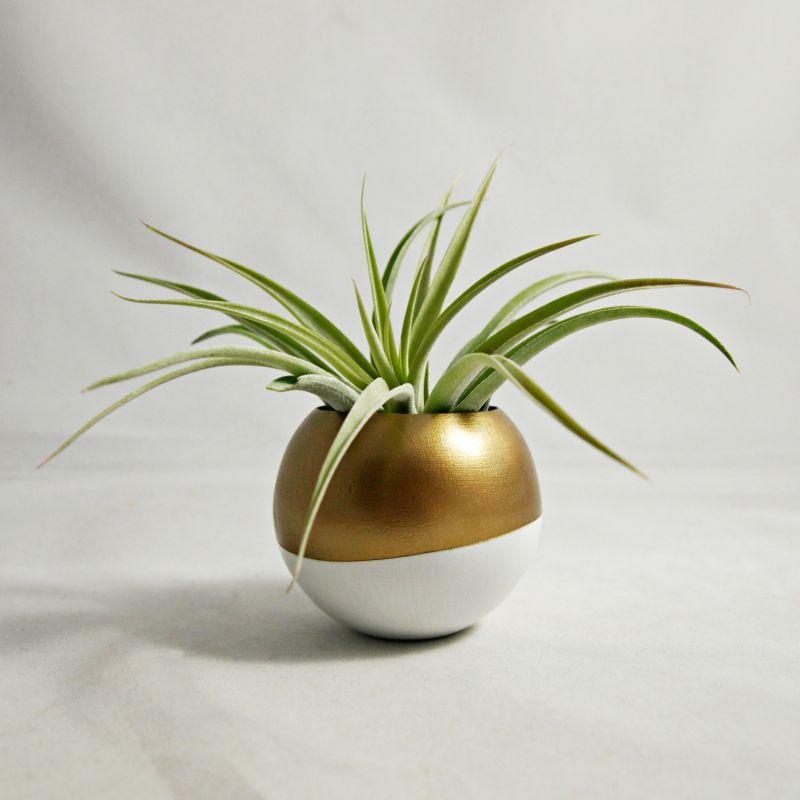 vaso dourado e branco para plantas aéreas