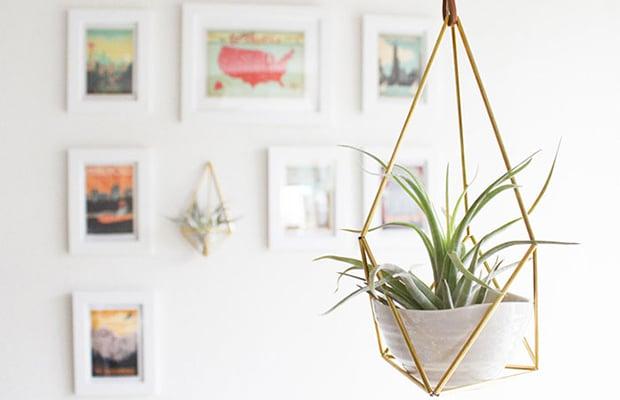 Vaso suspenso de ferro com plantas aéreas que gostam de sol