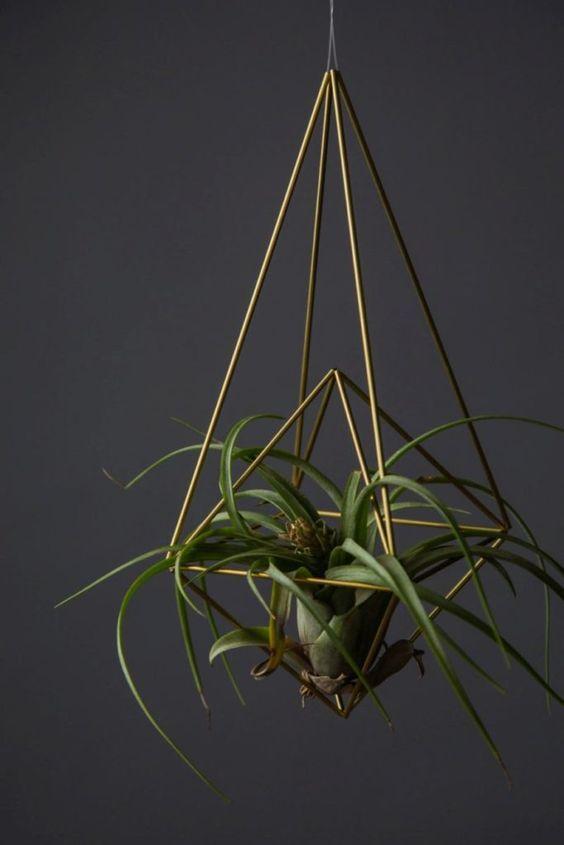 Vaso suspenso para air plants