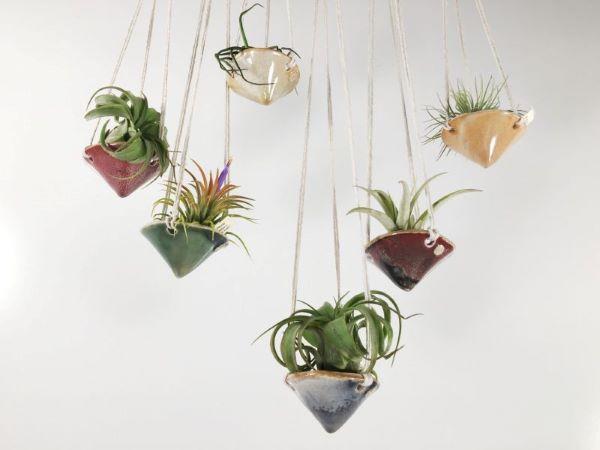 Vasos pequenos para plantas aéreas