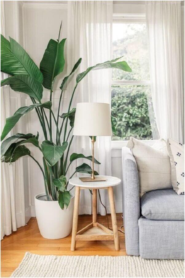 Decoração de sala com plantas naturais e sofá cinza Foto Decor Fácil