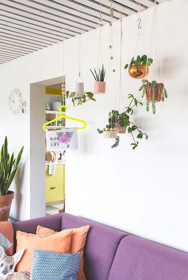Decoração de sala com plantas pendentes e sofa roxo Foto Revista Artesanato