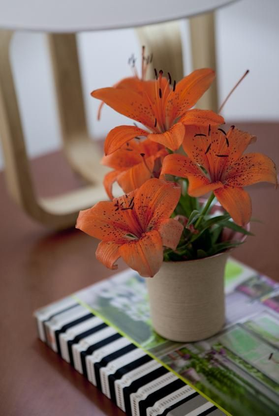 Vaso de flor para sala decorada com enfeites charmosos