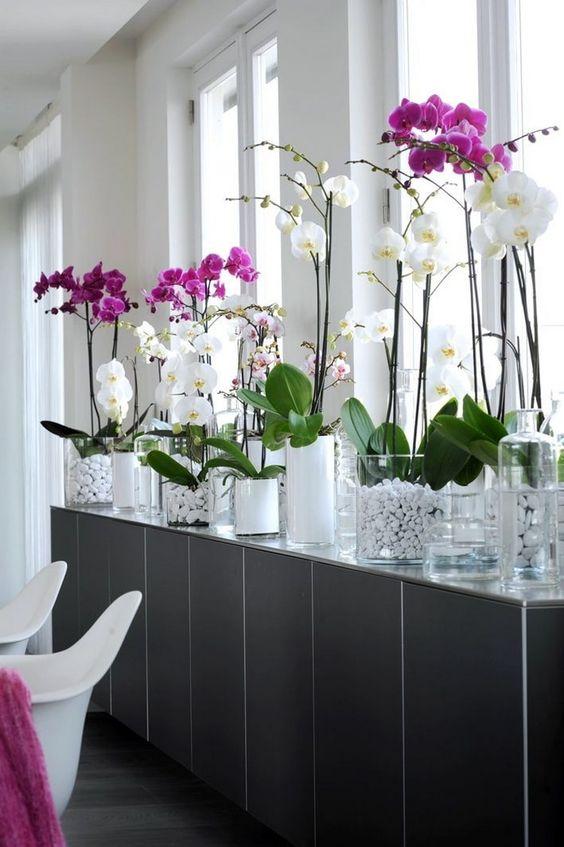 Vasos de flores para decoração de sala moderna com orquídeas lindas