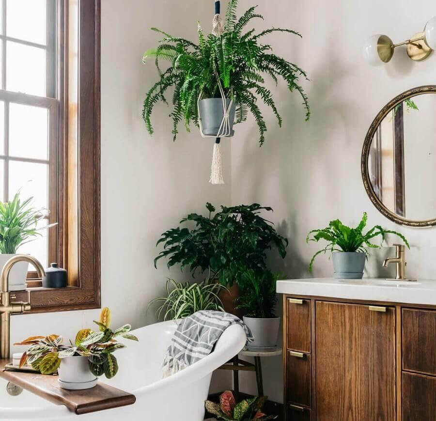 Vasos de plantas para decoração de banheiro simples e bonito Foto Omysa